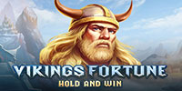 Viking Fortune: Hold and Win